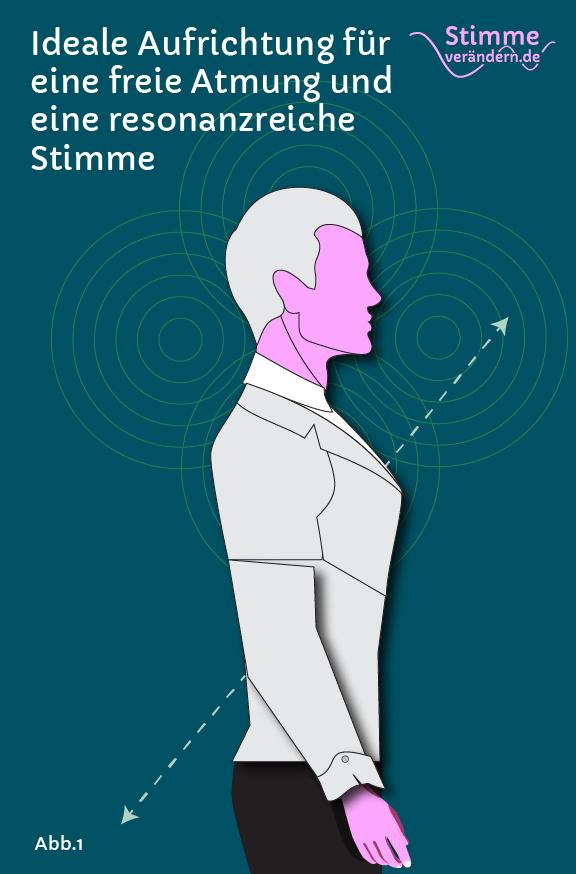 Ideale Aufrichtung für Atmung und Stimme
